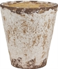 Bay Terracotta Pot