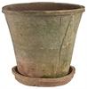 Sorrel Pot & Saucer