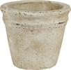 Basil Terracotta Pot